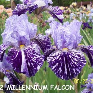 0132-Millennium Falcon