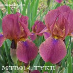 MTB014